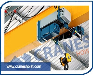 crane hoist manufacturers in india
