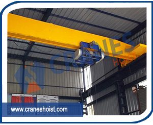 eot crane manufacturer in gujarat
